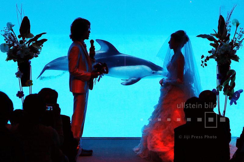Hochzeitszeremonie vor einem Delfinbecken im Aquarium von Nagoya, 16. November 2014